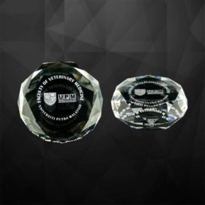 VPGSV010 – Crystal Paper Weight