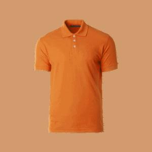 VPGSC00006 – Polo